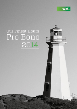 2014 Pro Bono Annual Review