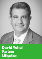David Yohai, Partner, Litigation