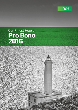View the 2016 Pro Bono Annual Review