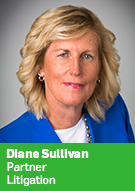 Diane Sullivan, Partner, Litigation